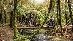 Mountain Biking Family Crossing Bridge-large_edited.jpg
