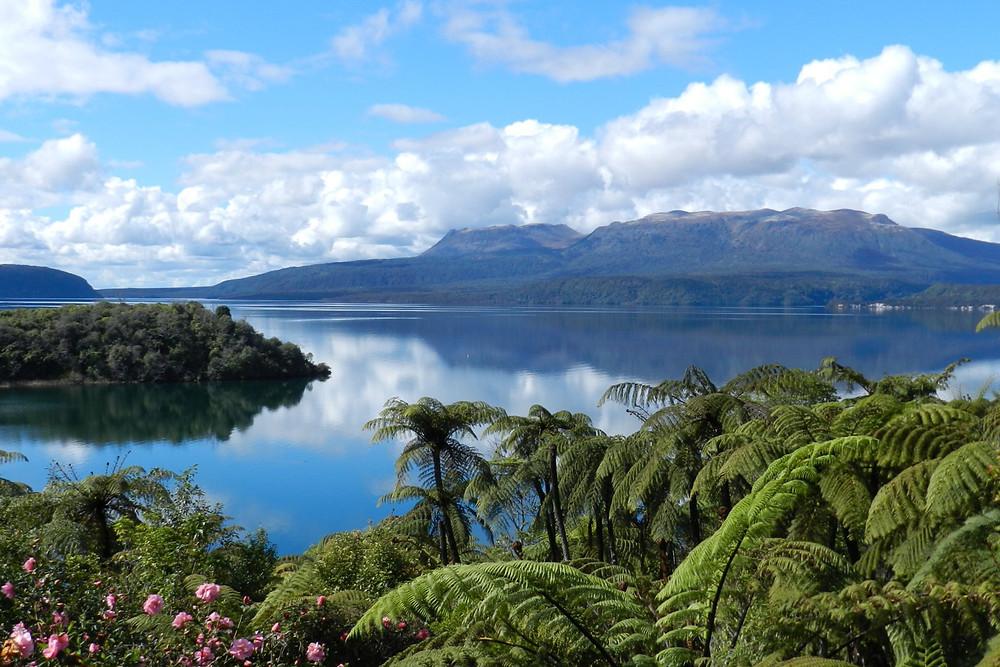 Gorgeous views over Lake Tarawera