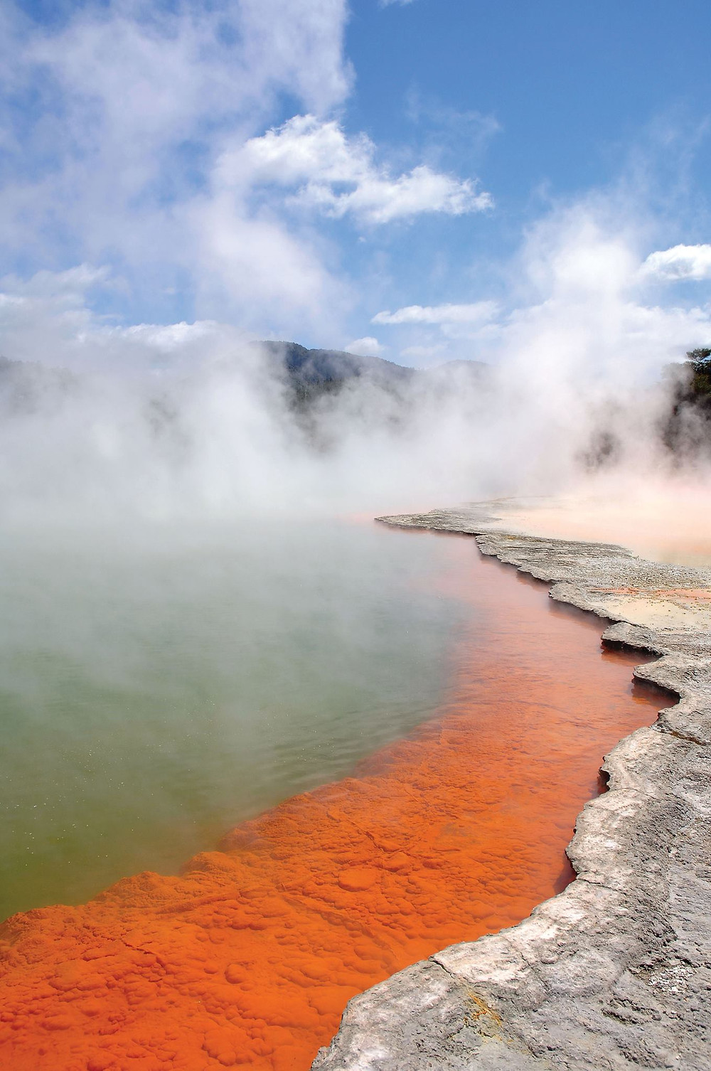 The unique Champagne Pool in Wai-o-Tapu steams with vivid oranges and greens