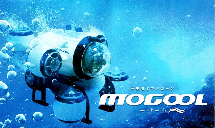 mogool_01.jpg