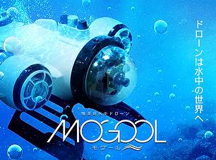 HP_MOGOOL_TOP.jpg
