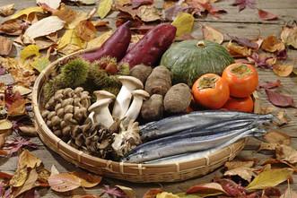 11月のマルシェキッチンは、秋を彩る食祭り。