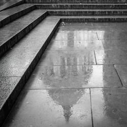 Framed in Rain