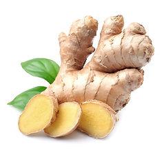 AdobeStock_Ginger Root.jpeg