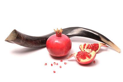 shofar rosh hashanah.jpeg
