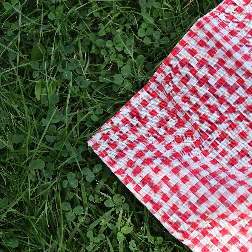 Pesach Picnic in the Park Following Services