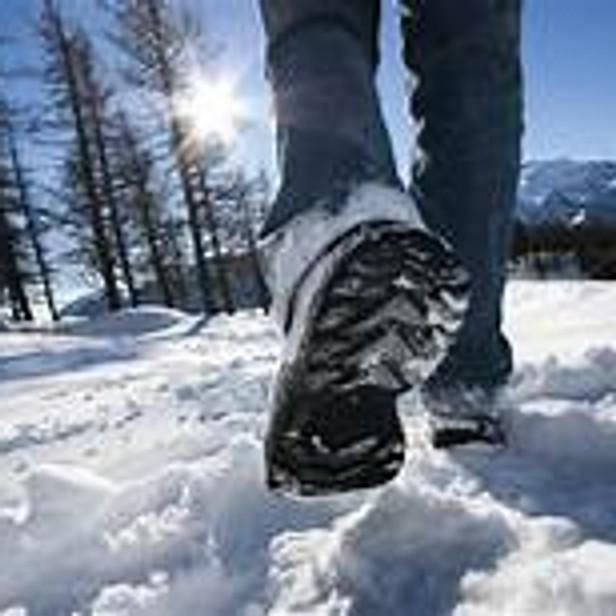 2:00 PM PAI Winter Walk in Prospect Park