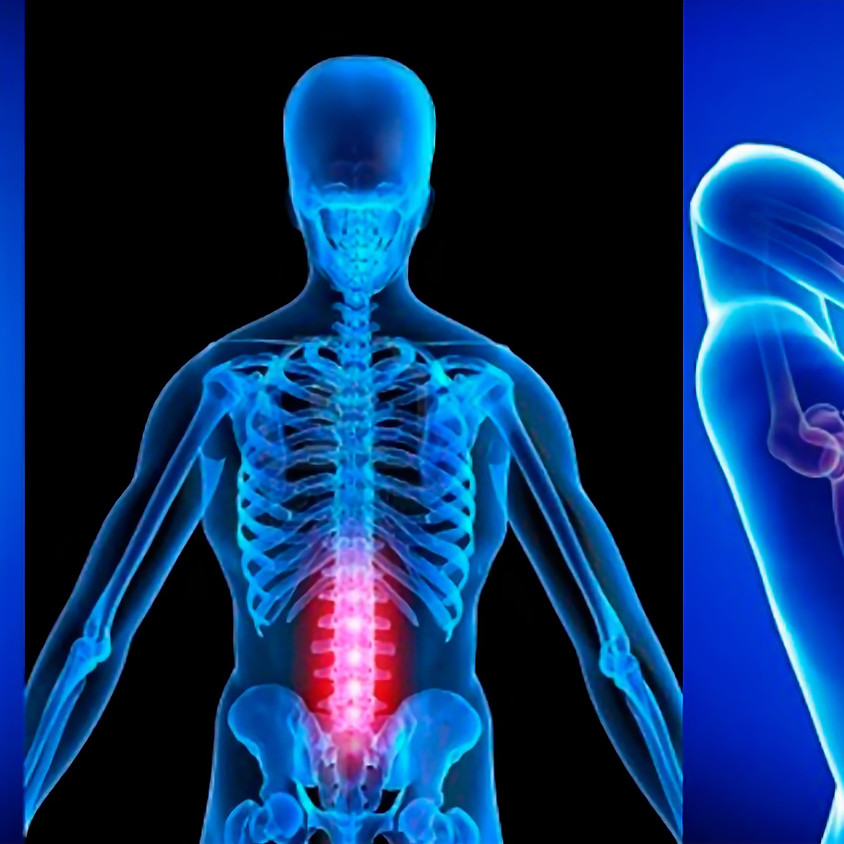 6:30PM PAI Shared Wisdom: Chiropractic Explained, with Merrie Handfinger