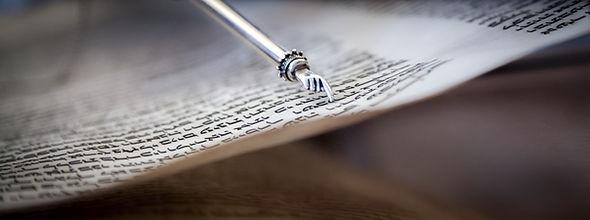 Torah.jpeg