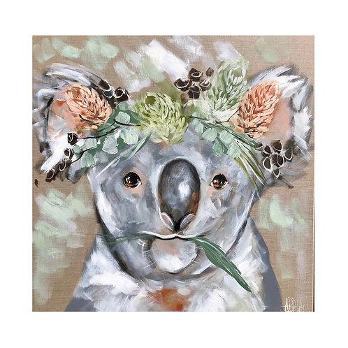 Coaster Koala