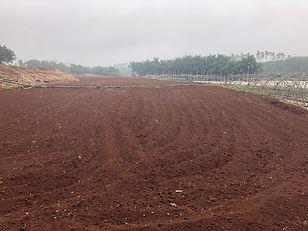 Soil with Volcanix.jpg