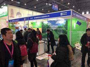 Exhibition Chengdu 1.jpg