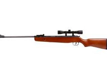 Winchester 1100WS