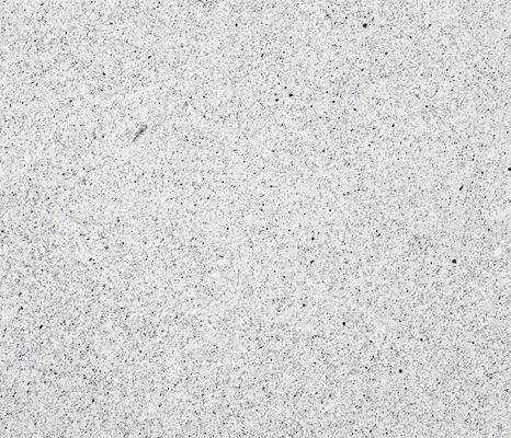 Sierra White 40452_edited.jpg