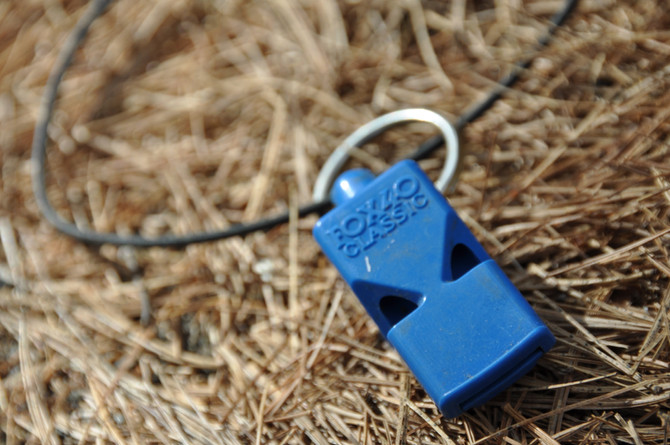 THE FOX FORTY WHISTLE