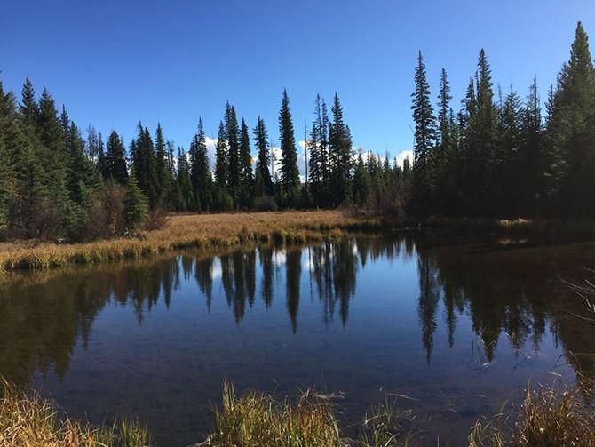 Lac le Jeune Hike - Oct. 2, 2016