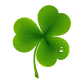 Irish Clover wood flooring banner