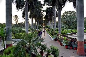10. Jayant Rose Garden.JPG