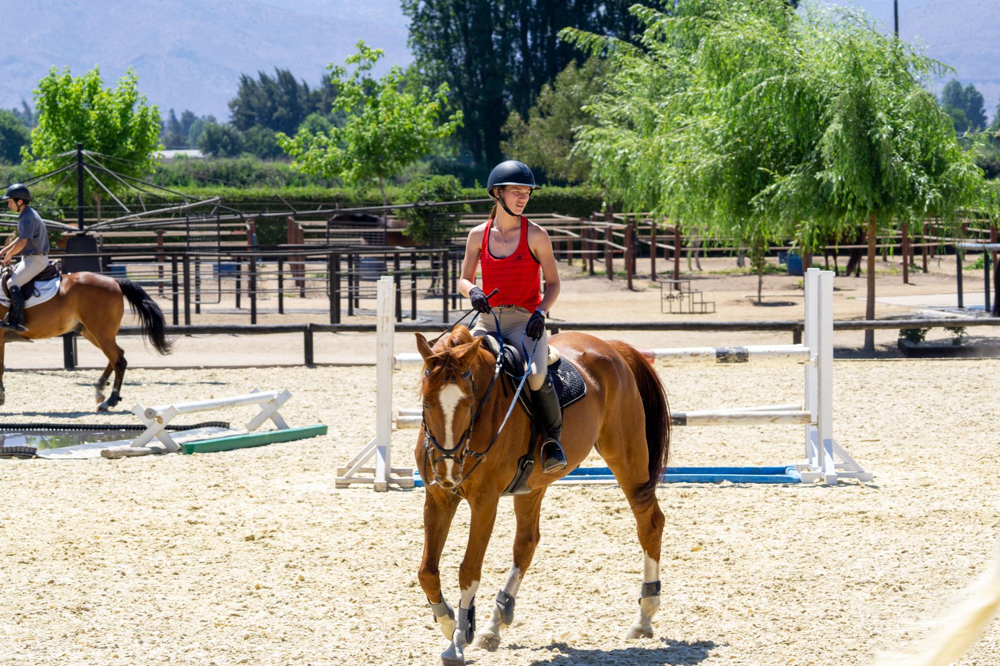 Clases Equitacion