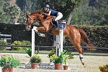 Equitacion Chile