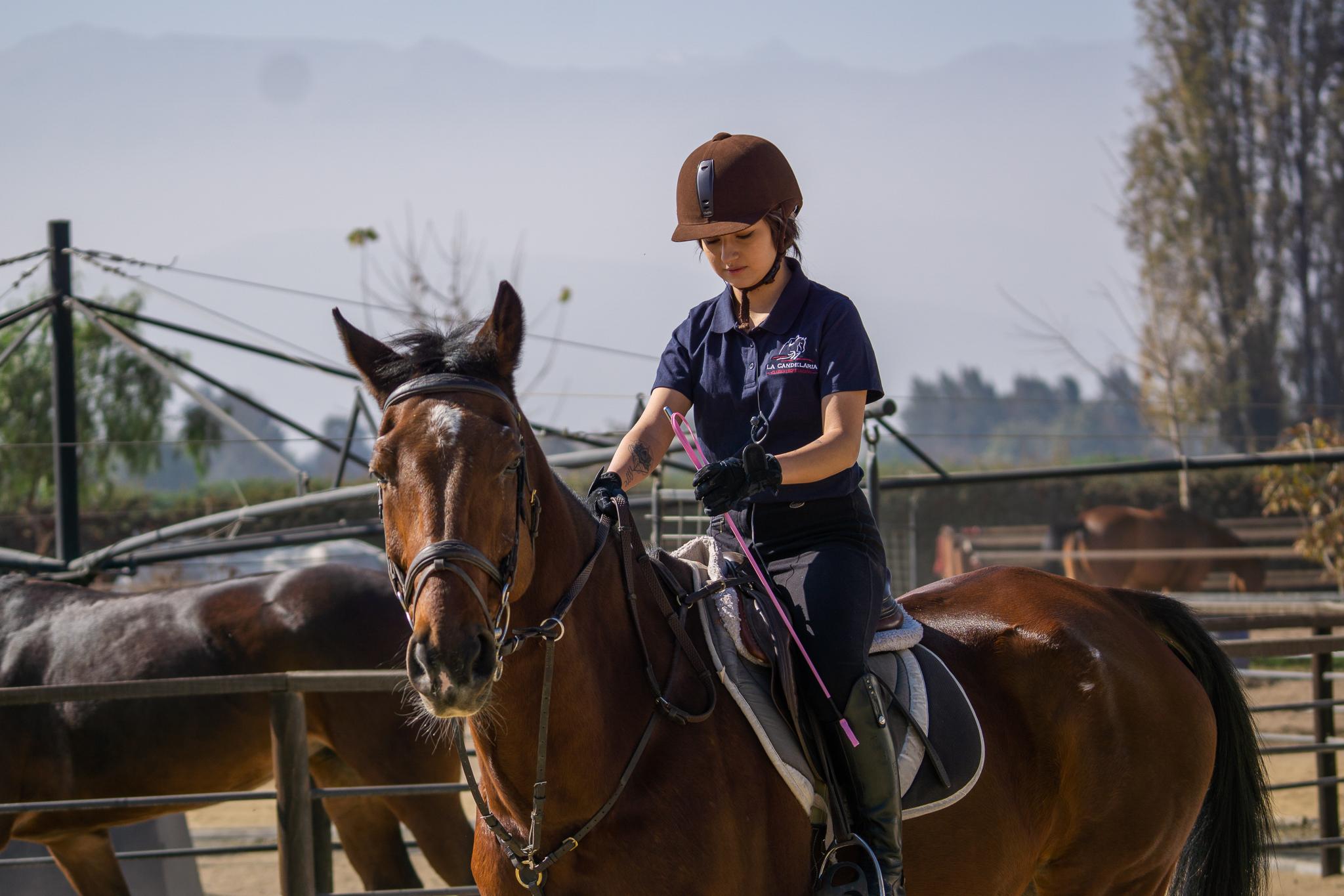 Por comenzar clase equitacion