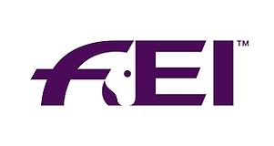 FEI.png