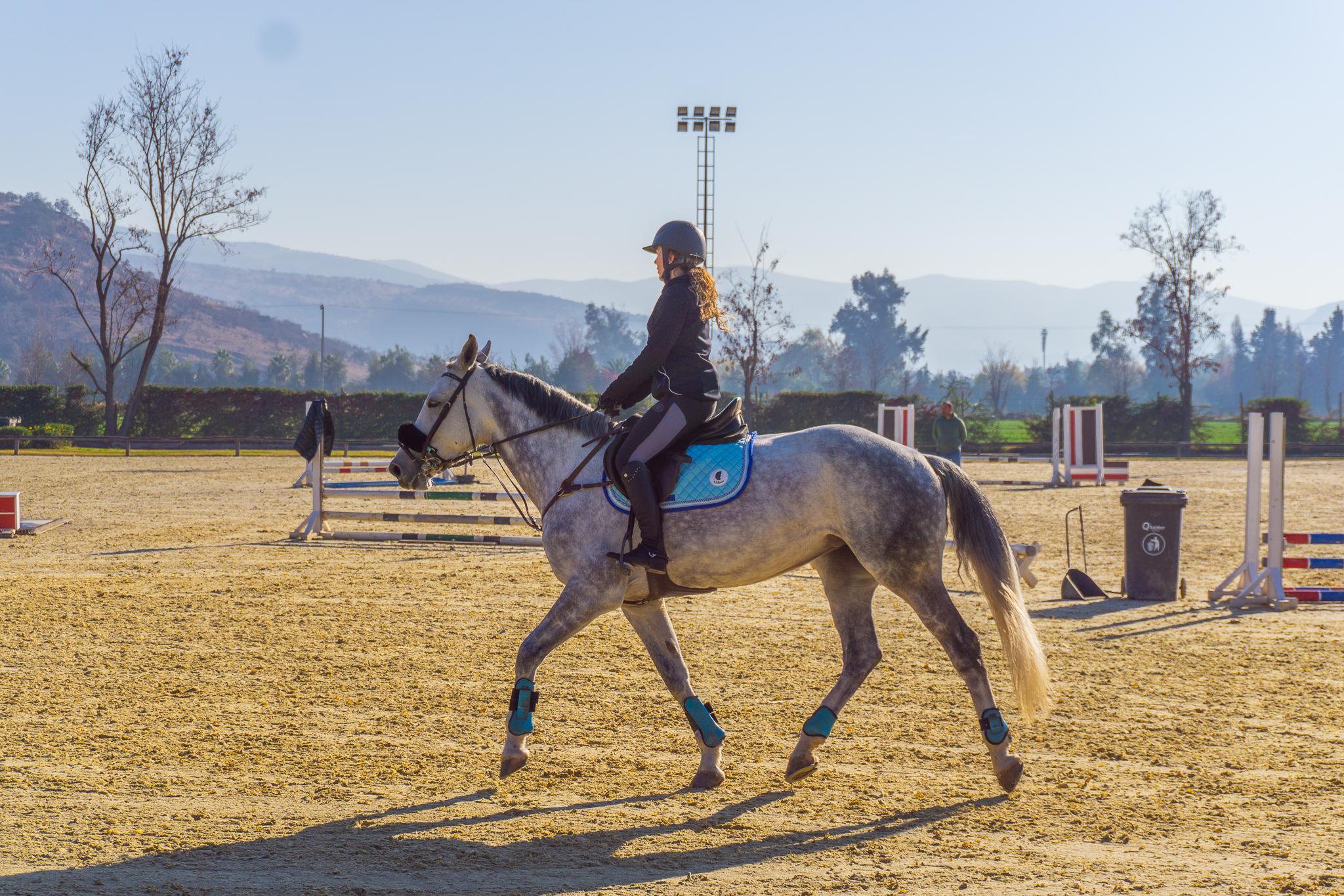 Clases de Equitación Adultos al trot