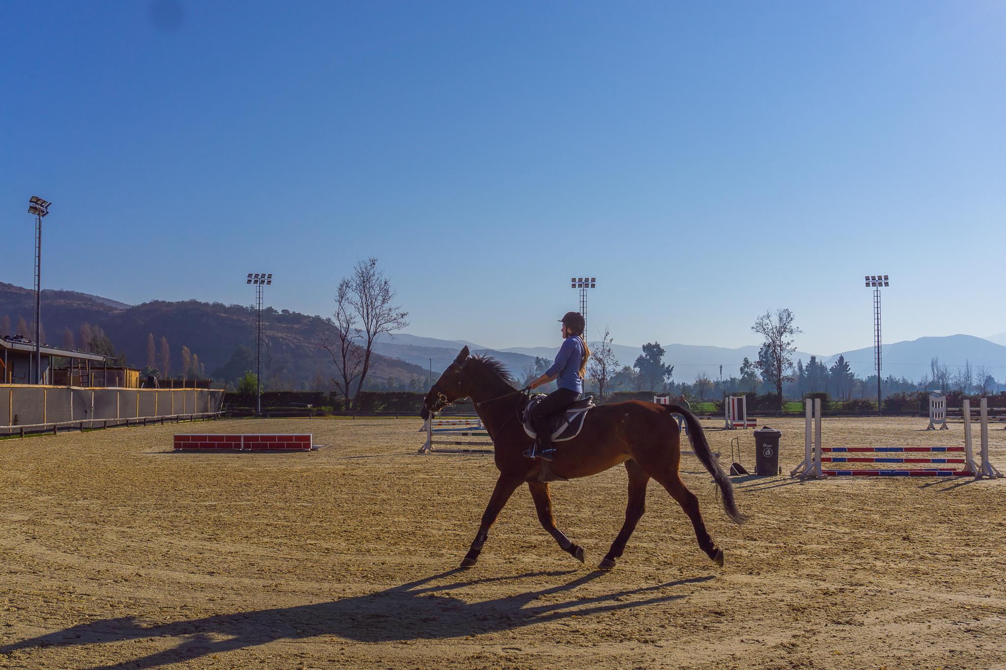 Clases de Equitación Adultos trote