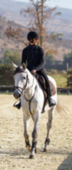 iniciado el trabajo con su caballo