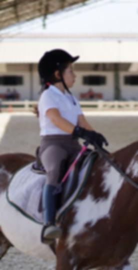 Concentracion en clase de equitación individual