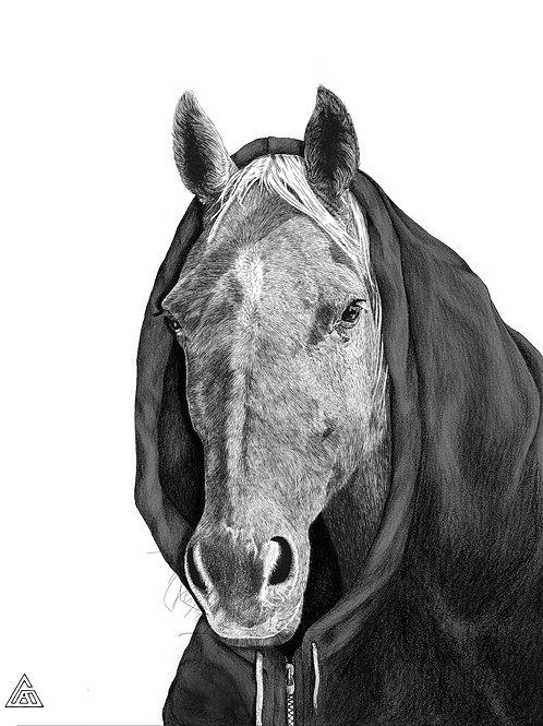 Horse in a Hoodie Print
