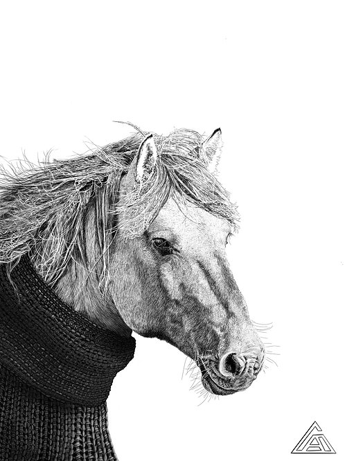 Horse in a Sweater Print