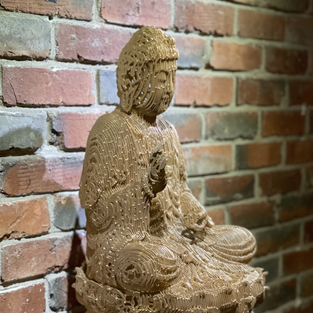 There is no essence- Amitabha_2021_Paper, urethane clear on paperl_52x31x31cm