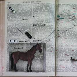 L'objet qui parle- Horse