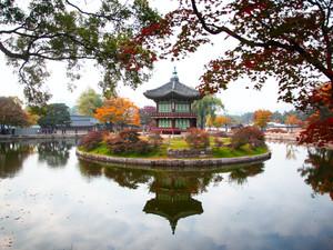 BEAUTY THROUGH THE AGES: KOREA