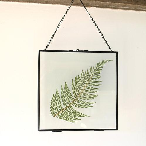 Real fern leaf botanical art glass with metal frame
