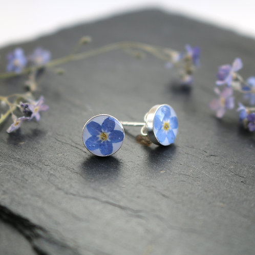 Sterling silver stud earrings with real forget me not flower