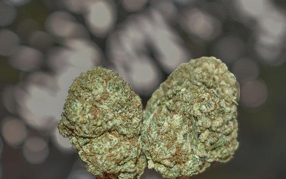 Triangle Mints