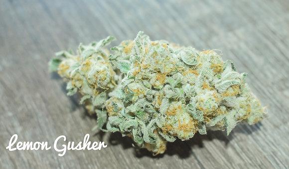 Lemon Gusher