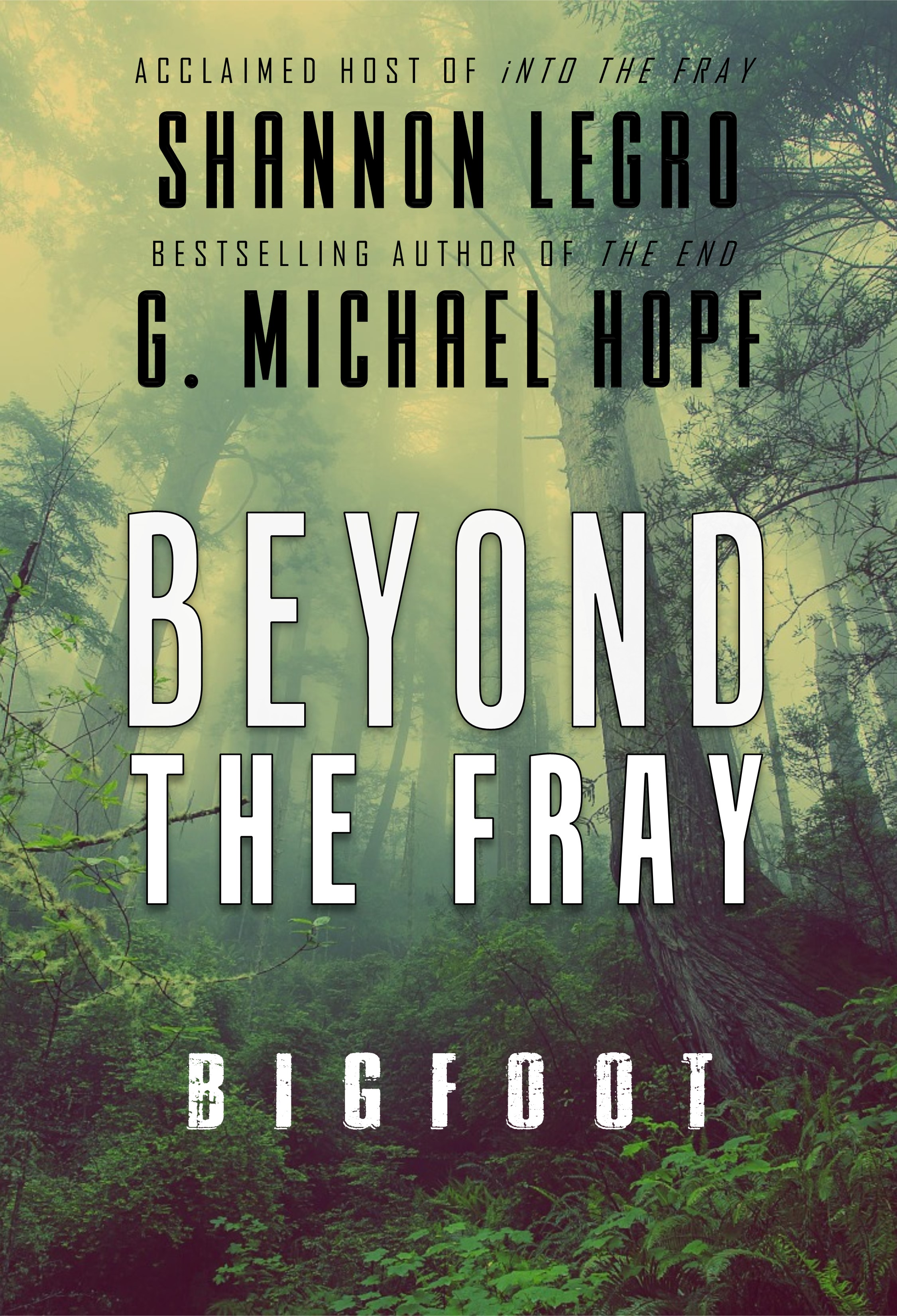 beyond the fray cover concept 10