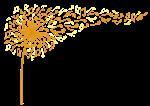 kfpa_logo_colour.png
