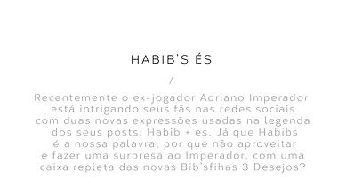 hbiba_descr.png