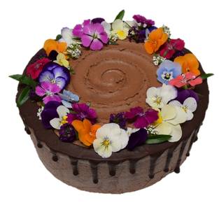 choc icing med std with mixed fruit and