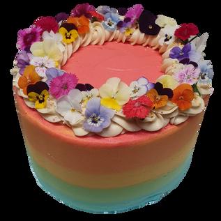 rainbow iced with vanilla swirls and flo