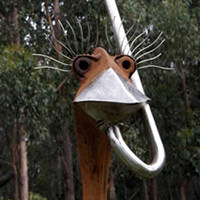 Noel Doeppel - Emu