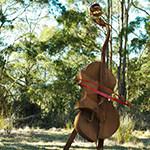Mike Limb - Cello