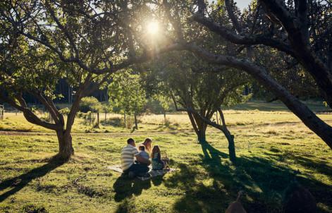 picnic_AFBB.jpg