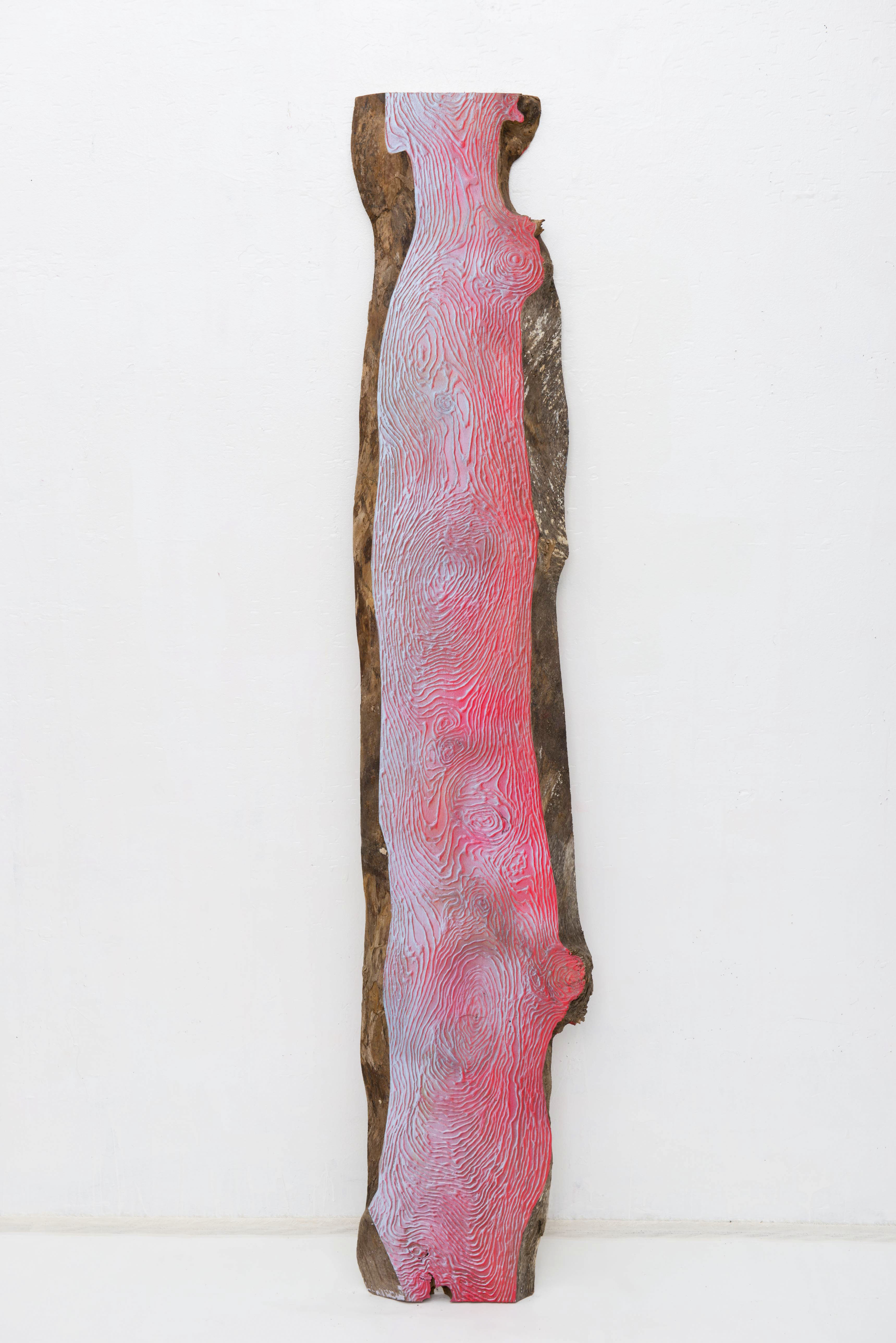 Wood Grain_Pink and blue