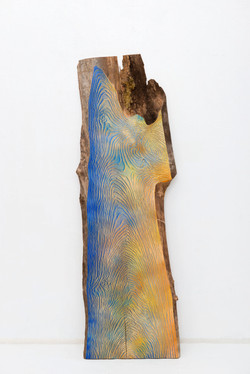 Wood Grain_Blue and yellow