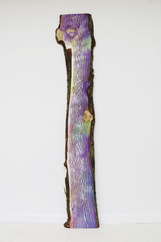 Woodgrain_Multicolors